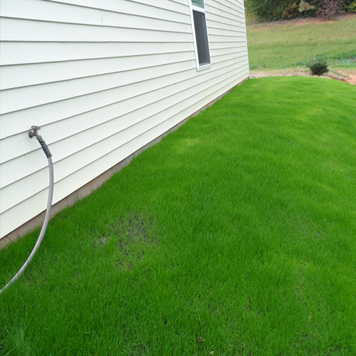 Final Touch Lawn Applications